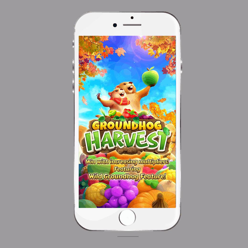 รูปเกมกับมือถือ-Groundhog-Harvest