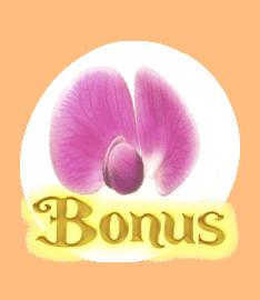สัญลักษณ์ Bonus Peas Fairy