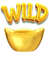 สัญลักษณ์ WIld Mahjong Ways