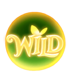 สัญลักษณ Wild