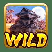 Wild (2)