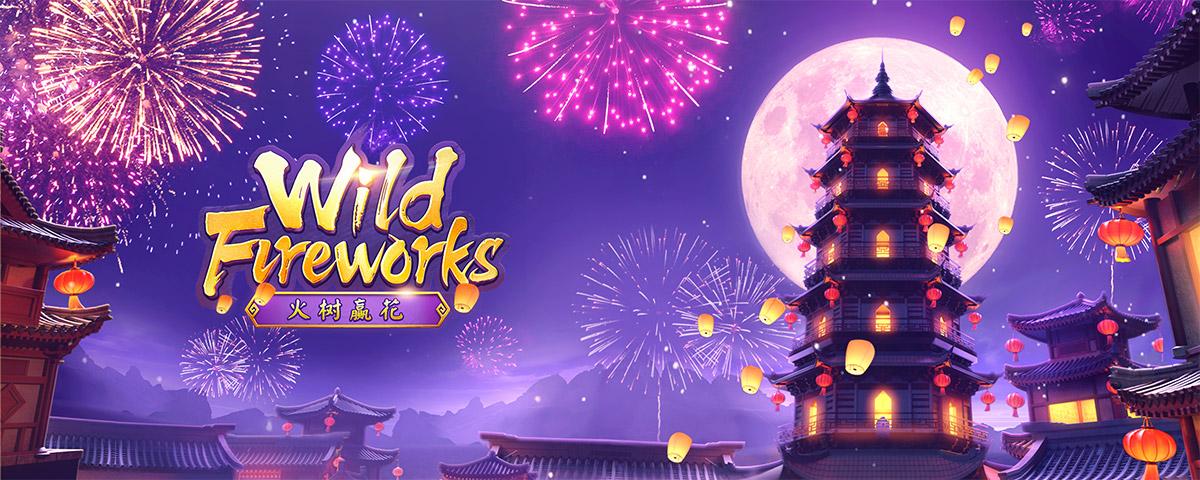 Wild Fireworks bg