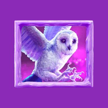 owl-Jack Frost's Winter