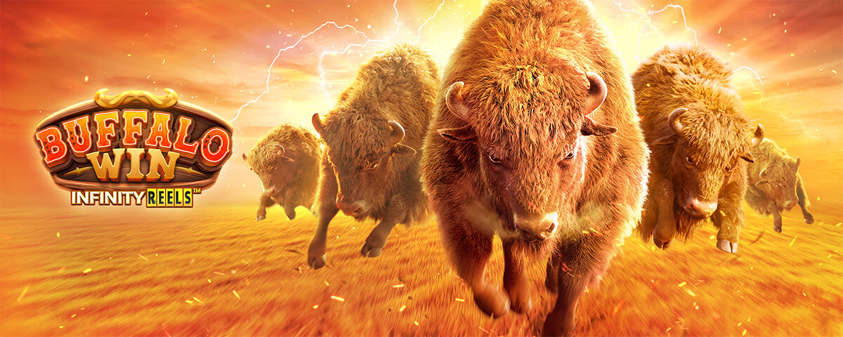 buffalo win bg